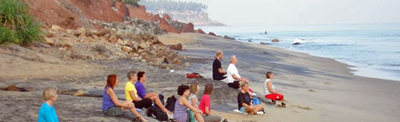 yogagrupp under palmerna